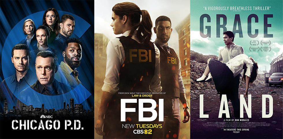 Shows Like The Blacklist On Netflix